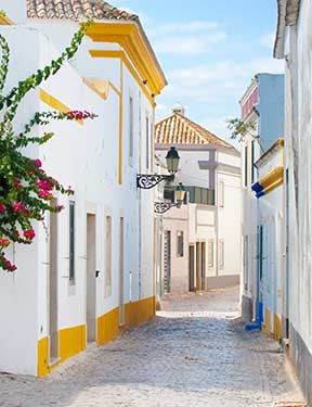 Activities in the area of Loule