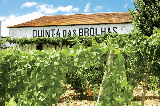 Read more about Quinta das Brolhas villa